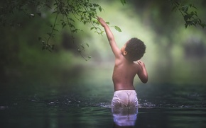 Picture water, branches, boy, black