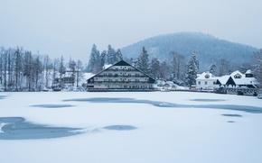 Picture misty, winter, snow, fog, hill, hotel, frozen, Slovenia, freeze, cold, foggy, mist, frost, frozen lake, …