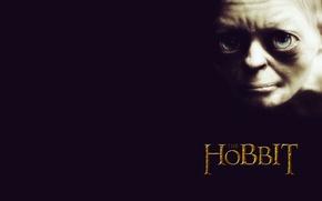 Picture smeagol, gollum, the hobbit