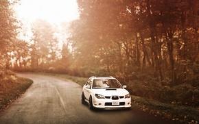 Picture road, forest, subaru impreza, Subaru