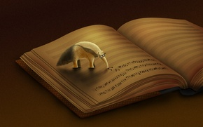 Picture notes, Anteater, book