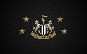 Picture wallpaper, logo, football, England, Champions, Newcastle United