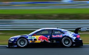 Picture Audi, Race, Red Bull, Sport, Blur, Last Year's Winner Ekström, Sports car