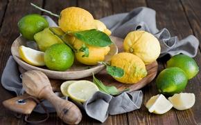 Picture plate, lime, fruit, citrus, lemons, Anna Verdina