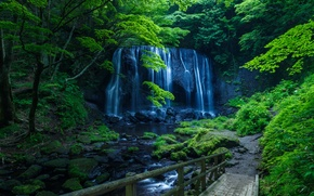 Wallpaper waterfall, trees, bridges, moss, rock, greens, forest, stream, stones
