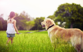 Picture sadness, dogs, grass, trees, children, childhood, child, grass, trees, dog, sadness, child, childhood, children, pet, …