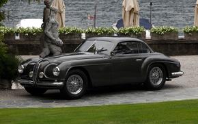 Picture Alfa, Romeo, 2500