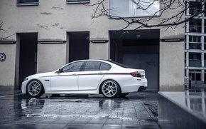 Picture BMW, BMW, Drives, F10, Side, Overcast, Concave