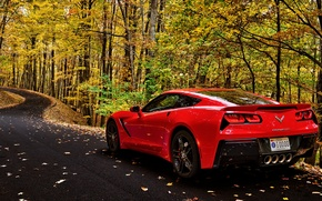 Picture road, car, autumn, forest, leaves, trees, corvette, forest, car, chevrolet, road, trees, nature, autumn, leaves
