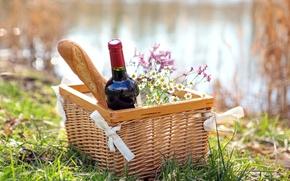 Wallpaper nature, wine, red, basket, bottle, chamomile, picnic, baguette
