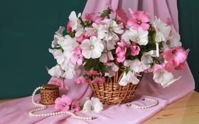 Wallpaper lavatera, basket, necklace, bouquet
