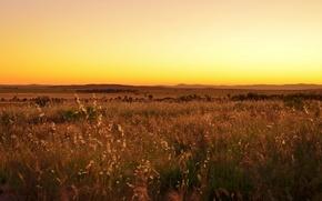 Wallpaper yellow sky, field, solar, hills, horizon, valley, sunset