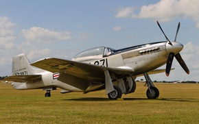 Picture field, the sky, grass, Mustang, fighter, war, action, North American, P-51D, period, single, far, radius, ...