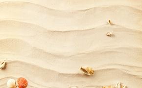 Picture sand, wave, waves, shell, starfish, sand, shells, starfish