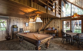 Picture table, balls, window, chair, ladder, cue, billiard room