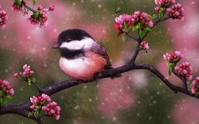 Picture summer, flowers, bee, tree, bird
