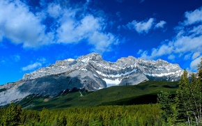 Picture forest, mountains, Canada, Albert, Banff National Park, Alberta, Canada, Banff, Cascade Mountain