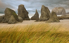 Wallpaper shore, grass, rocks