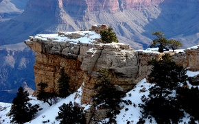 Picture snow, trees, mountains, rocks, gorge