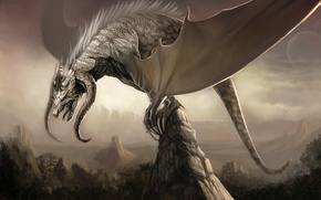 Picture mountains, rocks, dragon, wings