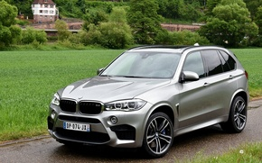 Picture BMW, BMW, AU-spec, 2015, F15, X5 M