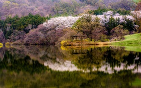 Wallpaper spring, forest, water, gazebo, lake, flowering, shore, trees, reflection, mountains, South Korea