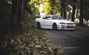 Picture GTR, Nissan, White, Skyline, R34, Road
