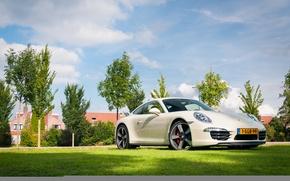 Picture Porsche, Carrera, 991