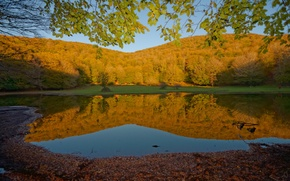 Picture Nature, Reflection, Autumn, Lake, Forest, Fall, Foliage, Autumn, Lake, Forest