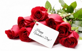 Picture flowers, roses, bouquet, red, red, Valentine`s day, roses