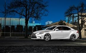 Picture night, Lexus, wheels, side, black, metallic, Lexus, vossen, IS250