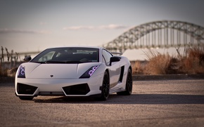 Picture Lamborghini, Superleggera, Gallardo, LP 570-4, Lamborghini, Gallardo