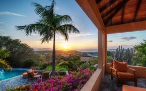 Picture sunset, flowers, Palma, chair, pool, cactus, terrace, British Virgin Islands, Virgin Gorda, British virgin Islands, …