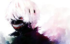 Picture anime, mask, white hair, anime, art, red eye, Tokyo Ghoul, Ken Kanek, Tokyo Ghoul, The …