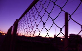 Picture macro, sunset, mesh, The fence