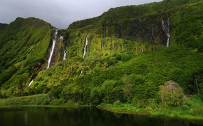Picture greens, rocks, spring, Portugal, waterfalls, Azores, Gregor Samsa photography, the island of Flores, Franzina