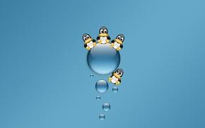 Picture blue, Minimalism, penguins