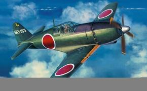 Picture war, art, airplane, aviation, ww2, Mitsubishi J2m6 Raiden (Jack) type 31