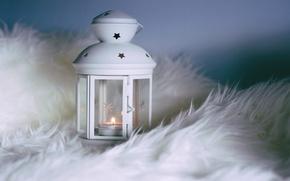 Picture style, lantern, fur