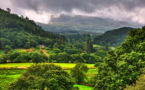 Picture forest, the sky, trees, mountains, clouds, house, valley