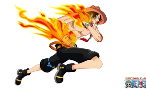 Picture fire, sake, game, One Piece, pirate, hat, anime, manga, Ace, skeleton, fire domineering, Portugas D. …