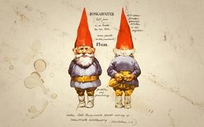 Wallpaper figure, text, dwarf, description