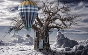 Picture clouds, balloon, tree, trunk