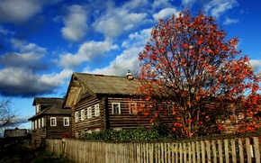 Picture autumn, bright colors, hut, Russian North, Arkhangelsk village