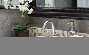 Picture crane, sink, mirror, Orchid, sink, bathroom