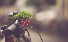 Picture bike, rain, call, bokeh, drops