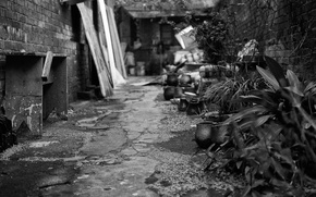 Picture City, black, White, old