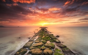 Picture sea, sunset, stones, moss