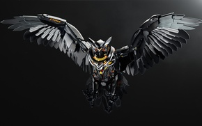 Picture Game, Owl, GTX, Asus, NVIDIA, ASUS, Gaming, 980, Strix