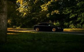 Picture car, black, audi a4